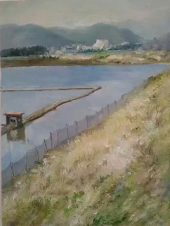 堤岸边的养殖场