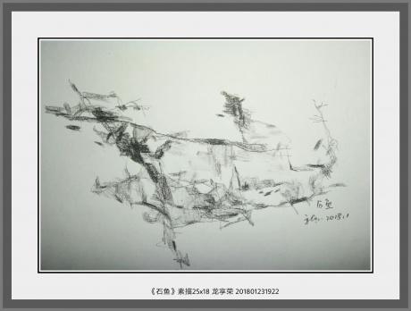 石鱼(素描)