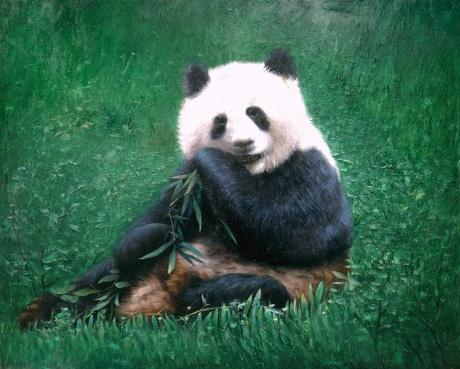 《大熊猫》110x100cm油画2007年创作