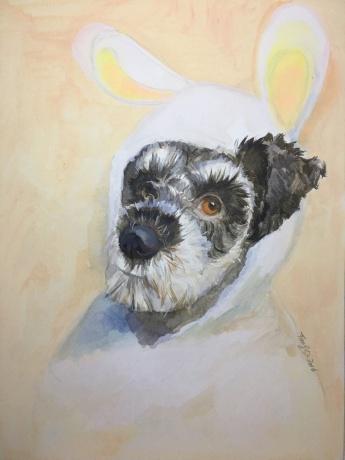 puppy 系列2016--委拉斯贵支的兔王