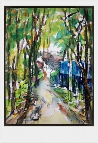 小树林15
