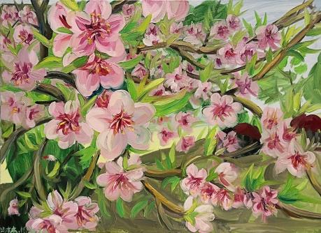 春拍    四月