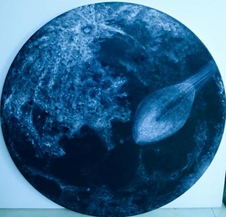 刘宇琛《我是谁》系列~晒大月亮等飞船