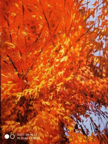 《秋天的回忆》