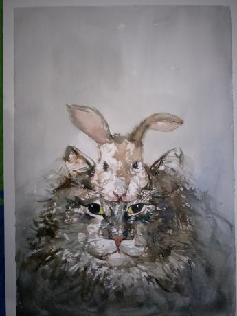 我是生肖之-猫的伪装系列