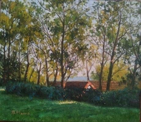 屋后的小树林