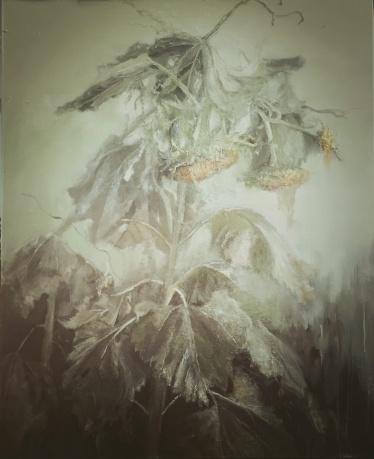 《秋启·葵》