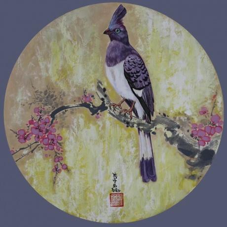 《风韵鸟先知》